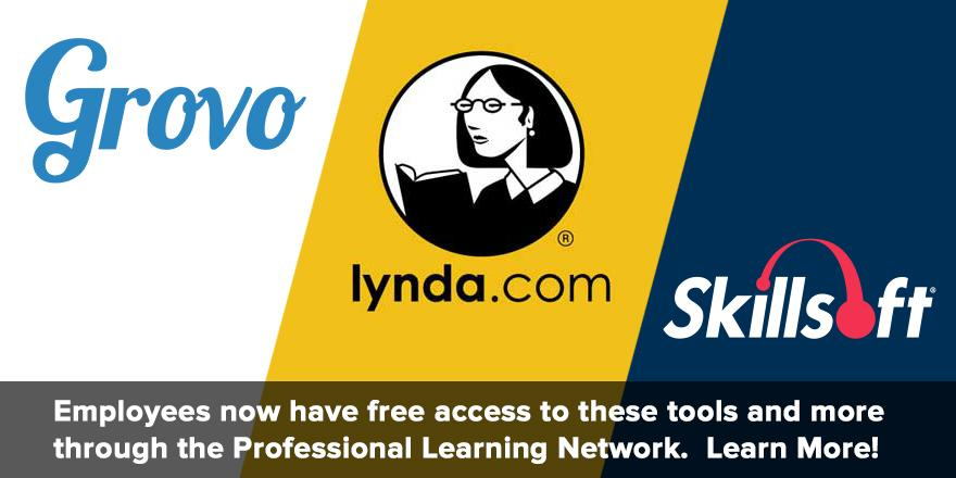 Employees now have free access to Grovo, Lynda.com, and Skillsoft via the Professional Learning Network. Learn more!