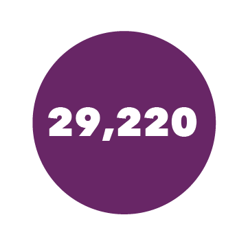 29,220 Students Enrolled