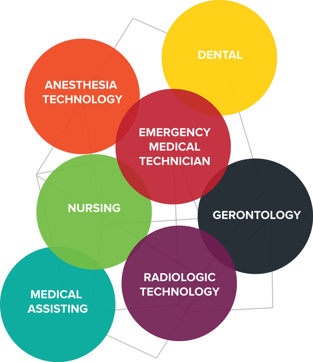 Graphic displaying the major areas of Health Sciences